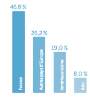 Entreprise Carrefour - Répartition du chiffre d'affaires par zone géographique - La vie des entreprises