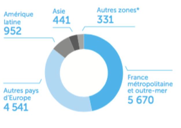 Entreprise Carrefour - Répartition des magasins par zone géographique - La vie des entreprises